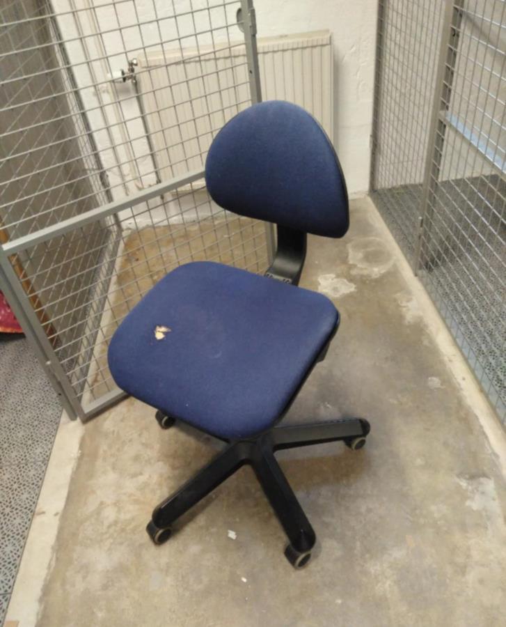 Skrivbordsstol bortskänkes.