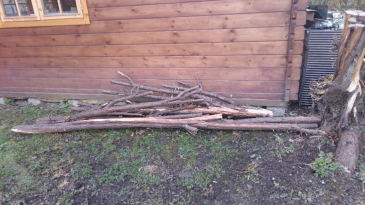 Ene trä