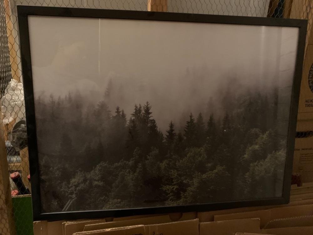Tavla med skog poster och svart ram
