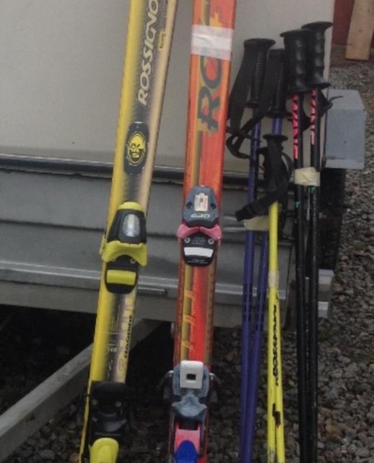 Slalomskidor o stavar
