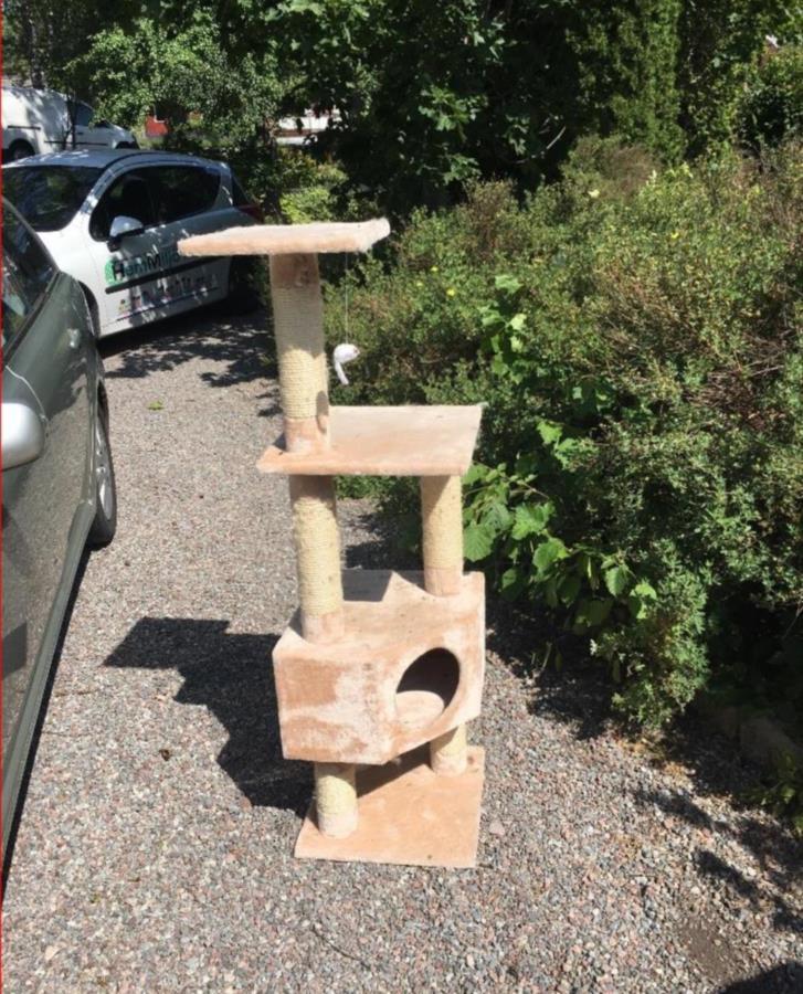 Katt klätterträd
